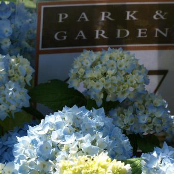 park und garten, small gardens
