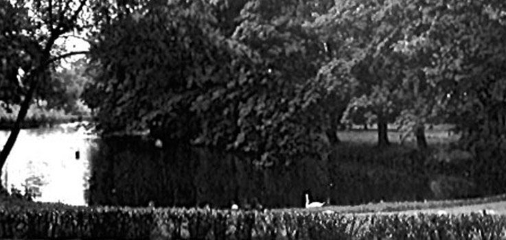 Teich Stockseehof