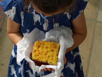 himbeeren kirschen pflücken – Kirschernte, Kaffee und Kuchen