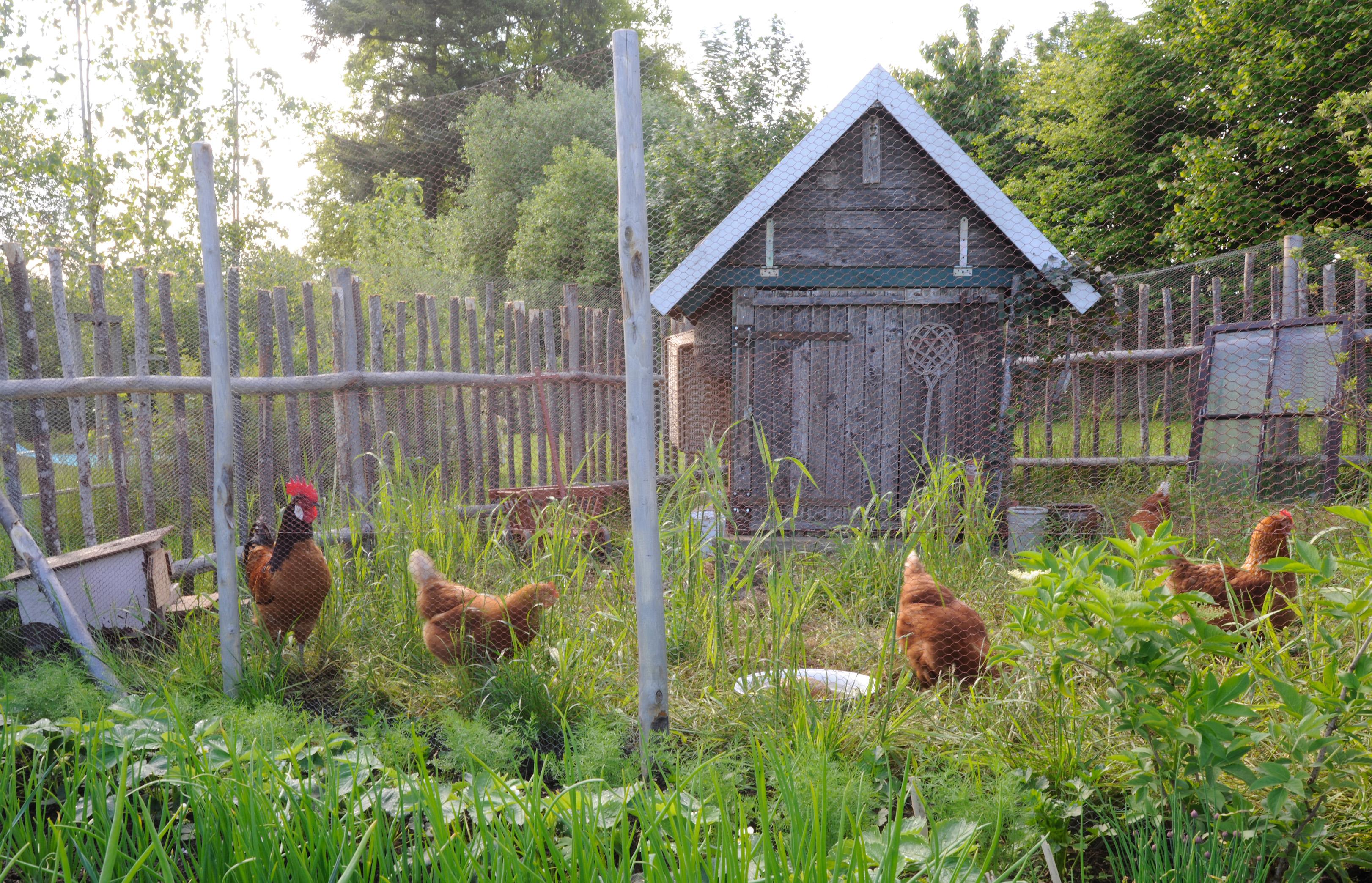 small gardens stockseehof gut stockseehof. Black Bedroom Furniture Sets. Home Design Ideas